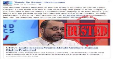Busted: CHR chief Chito Gascon wants Maute Group's human rights protected? It's satirical news!